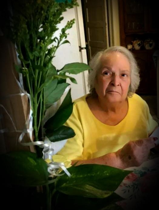 Lisa C. Alcocer